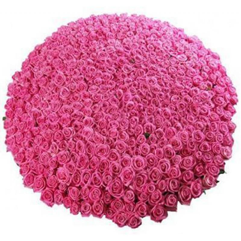 Картинки про, открытки с днем рождения миллион роз