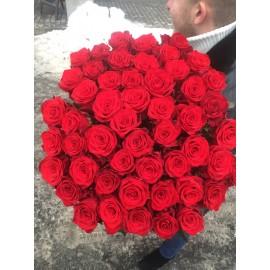 51 красная роза Гран При 90 см