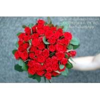 51 червона троянда Ель торо 50 см